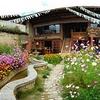 Shangri-la Swallow's Nest Hostel