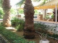 Stefanakis Hotel-Athens