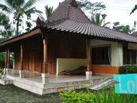 Ubud Hide Away