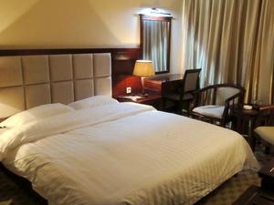 Zelin Hotel BH