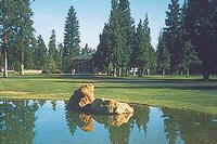 Best Western Ponderosa Lodge