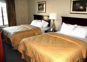 Comfort Inn New River