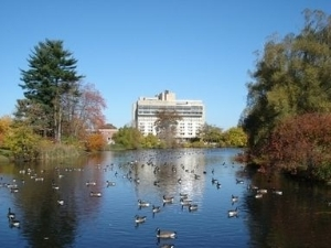 Umass Hotel At The Campus Cent