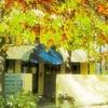Punthill South Yarra