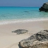 Bimini Bay Resort And Marina