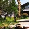 Conifer Lsyg Resort Hotel