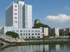 Liugang Parkview Commercial Ho