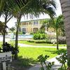 Royal Palm Belize