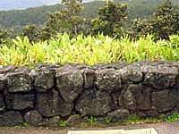 Volcano House Hotel