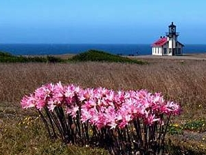 Lighthouse Inn At Point Cabrillo