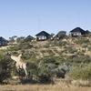 GocheGanas Private Wildlife Reserve & Spa