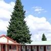 Evergreen Motel - West Yellowstone