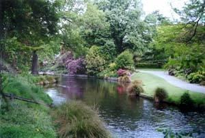 Argyle On The Park
