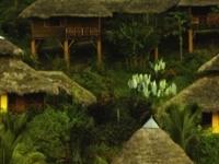 Arasha Resort And Spa