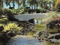 Casuarina Resort And Spa