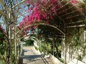 Sunshine Hotel Crete