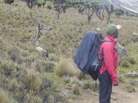 5 Days 4 Nights Mt Kenya Climbing: Sirimon-Chogoria Route