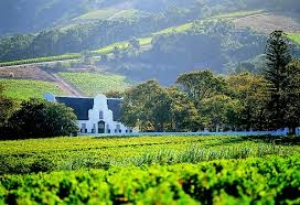 Cape Town Winelands Tour Photos