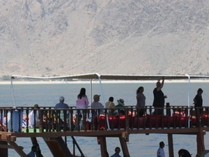 Musandam Dibba Dhow Cruise Photos