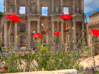 Ephesus Highlights Tour from Kusadasi Port