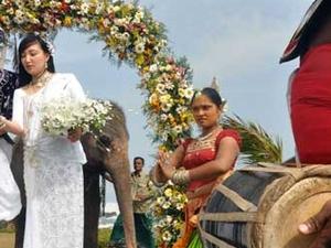 Honeymoon Tour Package Sri Lanka Photos