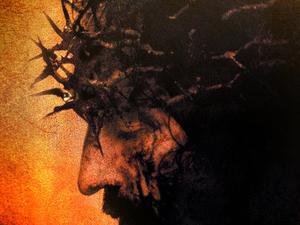 Passion of Christ Tour Photos