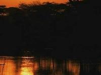 The Best of Mahale and Lake Tanganyika