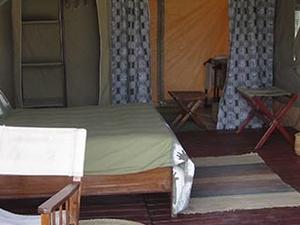 Tanzania Wildlife Safari Photos