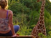 Tanzania Wildlife Safari Offer for Group