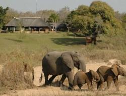 Kruger Park Tour Photos