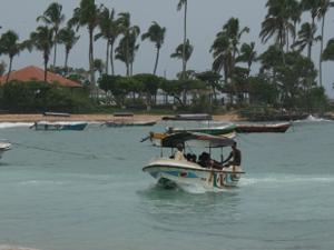 Explore The Golden Beaches of Sri Lanka Photos