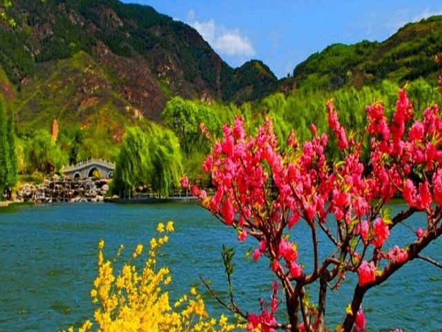 Paradise on Earth Photos