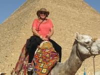 Passeio De Camelo Ao Redor Das Pirâmides