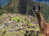 Machu Picchu by Train Full Day