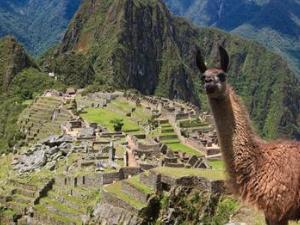 Machu Picchu by Train Full Day Fotos