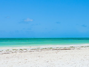 Zanzibar Beach Holiday Package