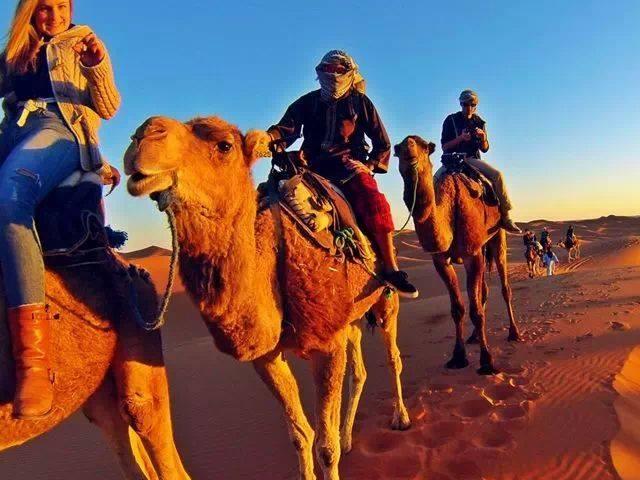 Desert Morocco Tours Photos