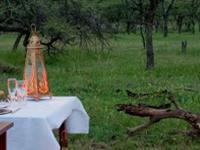 12 Days Kenya And Tanzania Honeymoon Safari 1