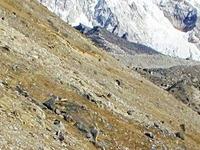 Towards Gorakshep