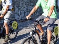 Park E Bike Sintra Day Tour