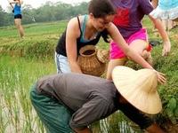 Thanh Ha Pottery Village & Kim Bong Carpentry Village Tour