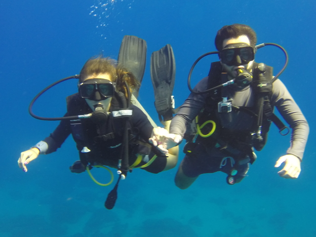 Semi-Private Diving Tour Photos