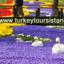 Turkeytoursistanbul Com 5