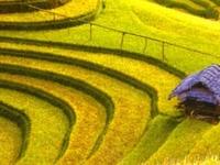 Voyage Séniors au Vietnam