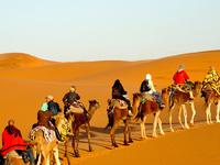 Zagora Shared Group Desert Tour