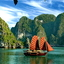 Halong Bay Cruises