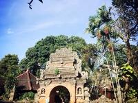Ubud Art & Culture Tour