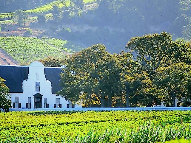 Cape Winelands Experience Photos