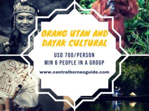 Orang Utan and Dayak Cultural Tour