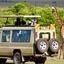Arkman Safaris
